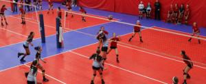 Elite Volleyball Winter League